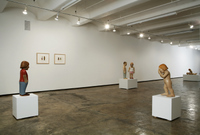 Installation View of Schreuders' 2007 exhibition 'The Fall'